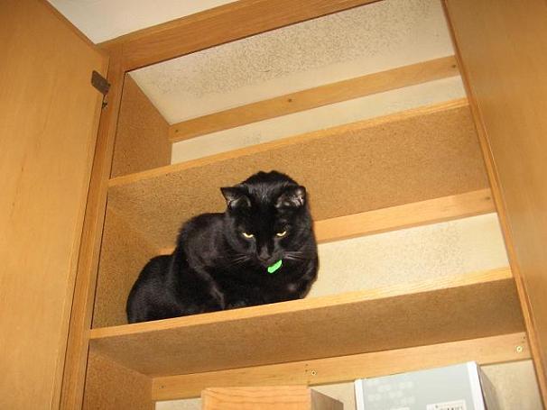 Ekkun@TopShelf-Nov2006-#2