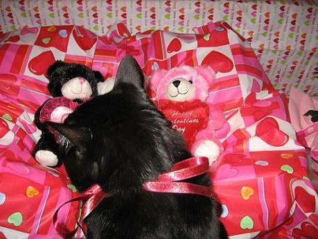 Ekkun&3ValentineBears-Feb2007-#1
