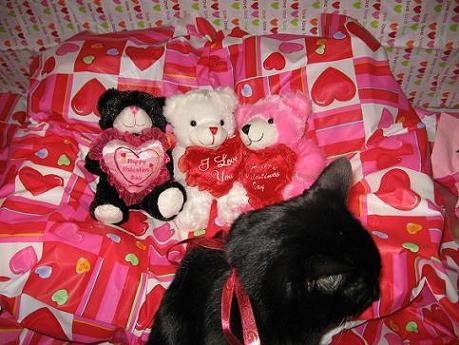 Ekkun&Valentine3Bears-Feb2007-#2