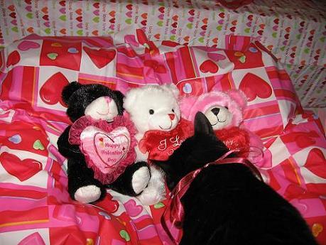 Ekkun&Valentine3Bears-Feb2007-#3
