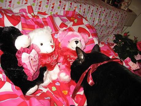 Ekkun&ValentinePinkBear-Feb2007-#1