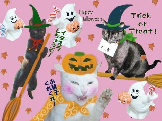 HappyHalloween_Paku-chan&Gacchan