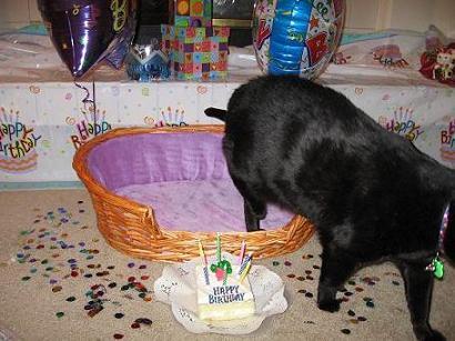 HappyBirthday!2007-225