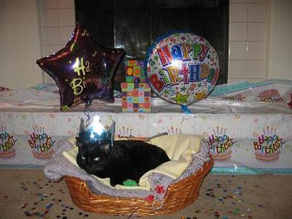 HappyBirthday!2007-240