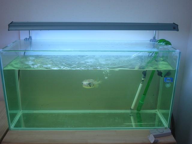 NEW90cm水槽