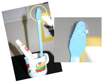 歯ブラシ拡大写真.jpg