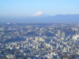 横浜ロイヤルパークホテル:眺望1:富士山