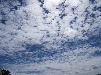 雲がきれい!