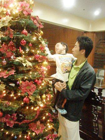 クリスマスツリー、大きいねぇ
