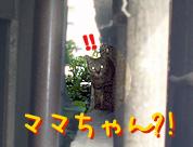 060430-6ママちゃん!?
