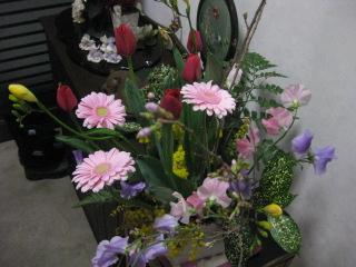 2011.02 069.jpg