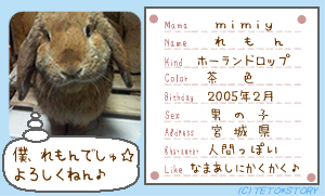 れもん名刺☆