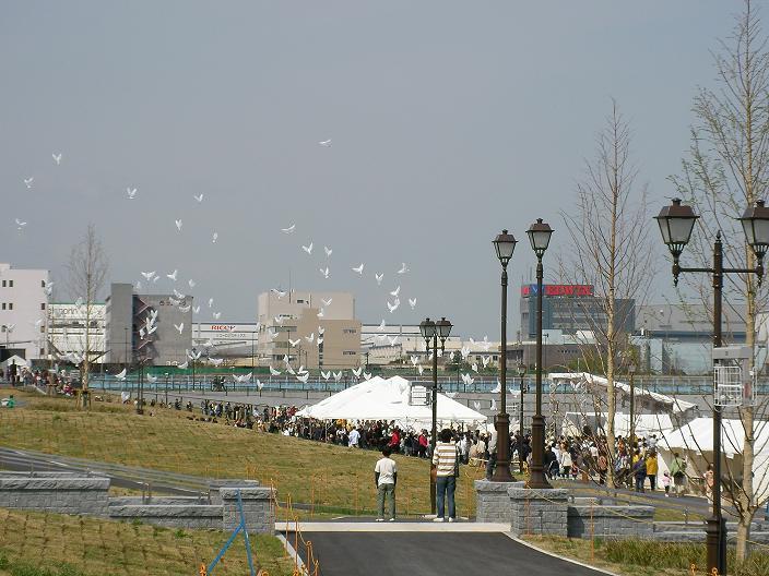 20080413 004b.jpg