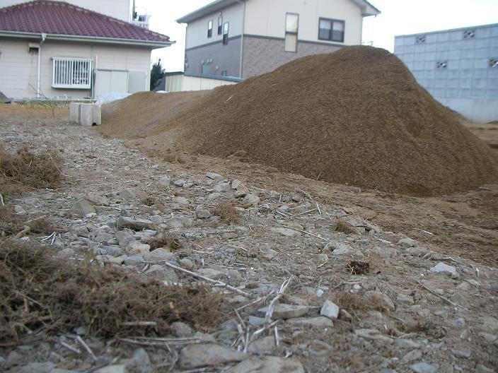 20110130_004b.jpg