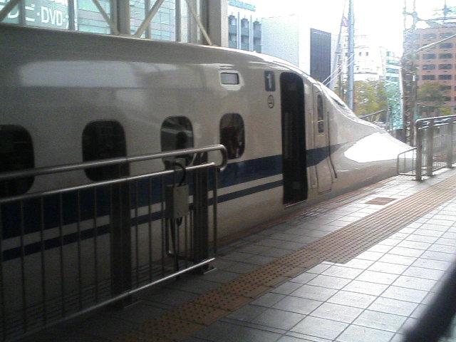 20081105 084.JPG