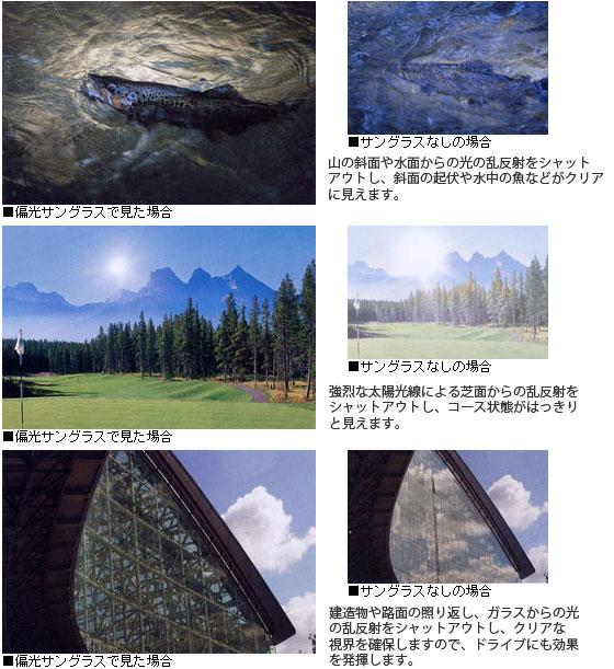 偏光レンズの見え方の例