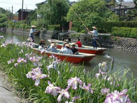 花菖蒲と川下り