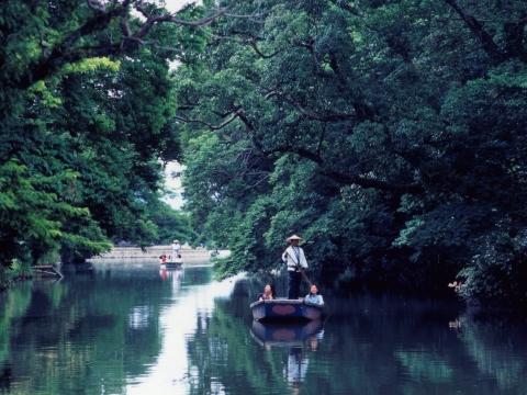 新緑と川下り