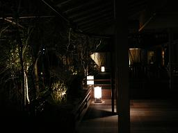 嵯峨沢館*庭園.JPG