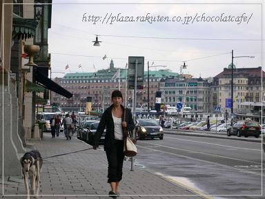ストックホルム*gamla stans_Saluki walking.JPG