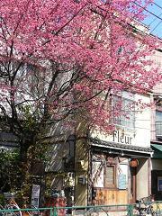 千駄木のチーズフォンデュ屋さん*Brasserie fleur.JPG