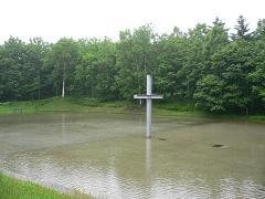 水の教会*安藤忠雄_雨のトマムの十字架1.JPG