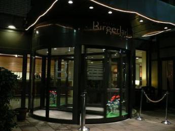 Hotel birger Jarl_night.JPG