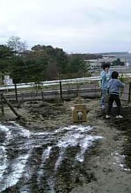 消石灰と完熟堆肥