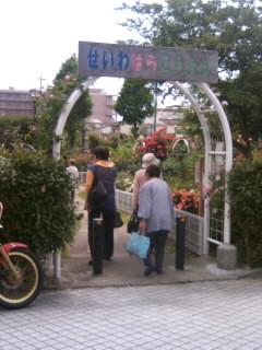 青和ばら公園1