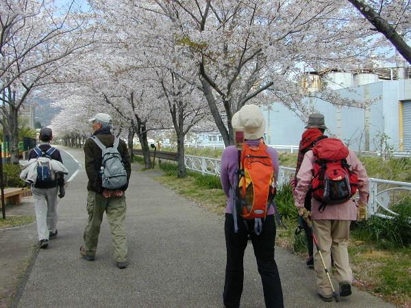 田原市自然ハイキングコース