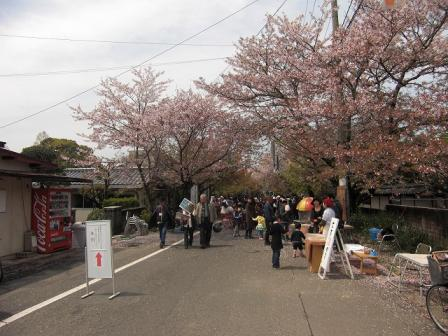 桜祭090405
