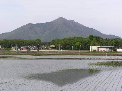田に映る筑波山
