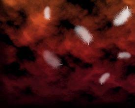 空の記憶 紅・1