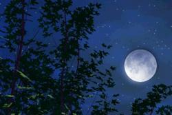 静寂(月)