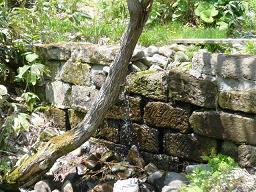 札幌軟石の再活用