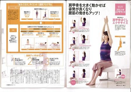nikkei_hels_2011_5_158_3.jpg