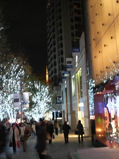 クリスマスイルミネーション 009.jpg