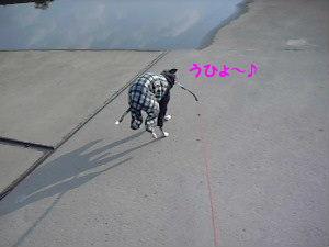 2008,11/6河川敷