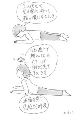 「漫画でヨガ」No5 楽々コブラのポーズ