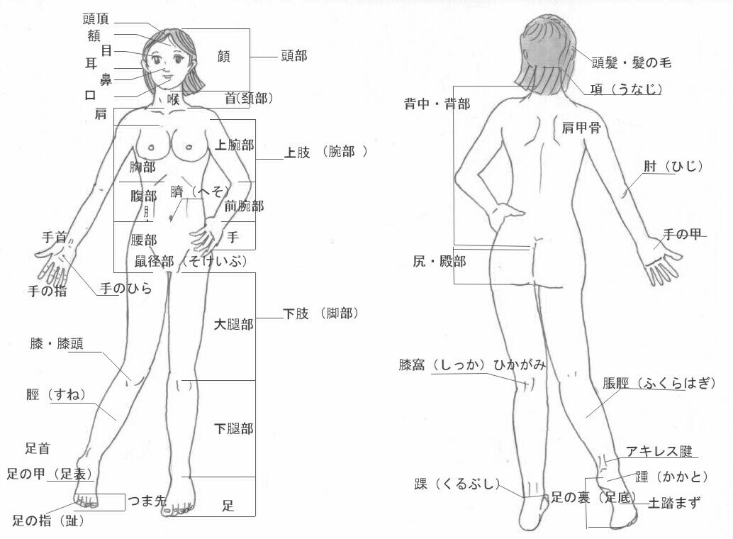 人体描各部の読み方