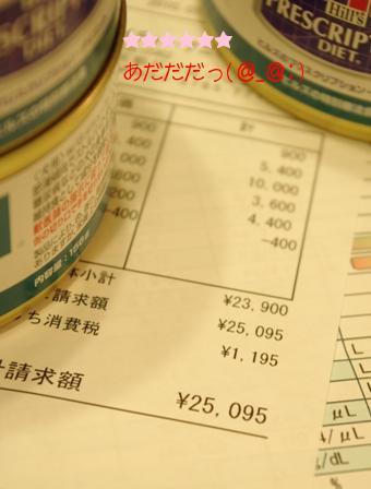 20100202 領収書.jpg