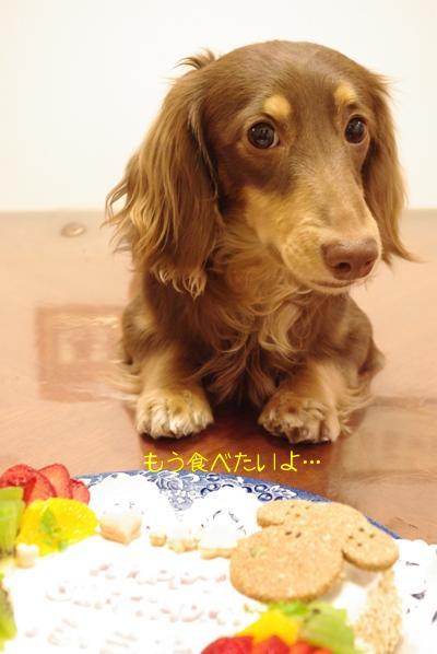 20100426 食べていい?.jpg