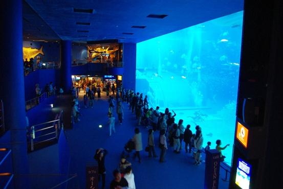 20110424 巨大水槽.jpg