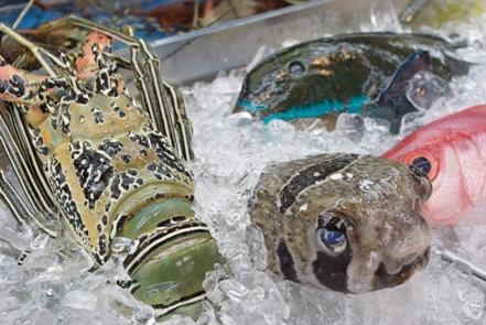 20110430 魚1.jpg