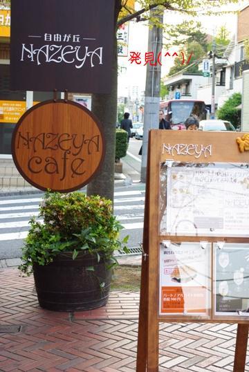 20100425 NAZEYA.jpg