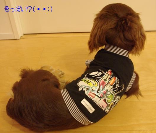 20100518 シナ作る….jpg