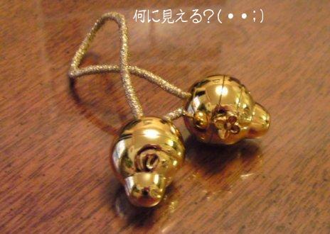 20090512 なんじゃこりゃ?.jpg