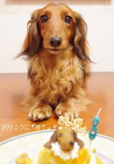 20110731 びしっ.jpg