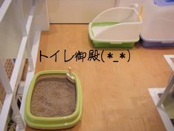 トイレが3つ(@_@;)