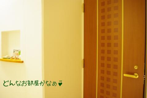 20110305 扉.jpg
